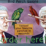 humorous image of former US president George Bush and Bill Clinton with Pinocchio like noses used as bird perches